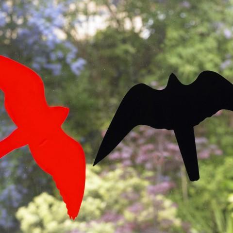 Hawk Silhouette Window Alerts