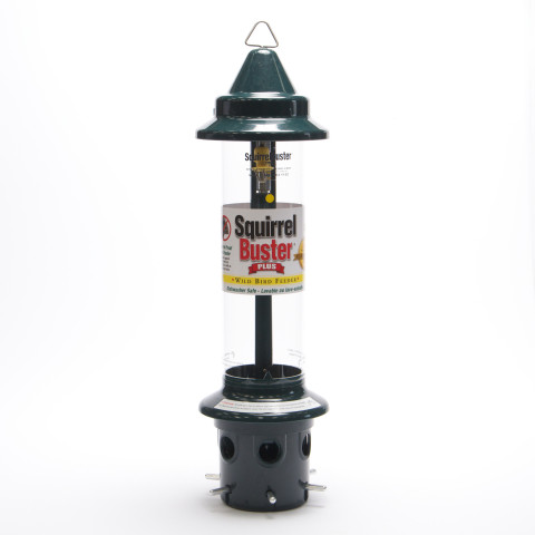 Squirrel Buster Plus Bird Seed Feeder