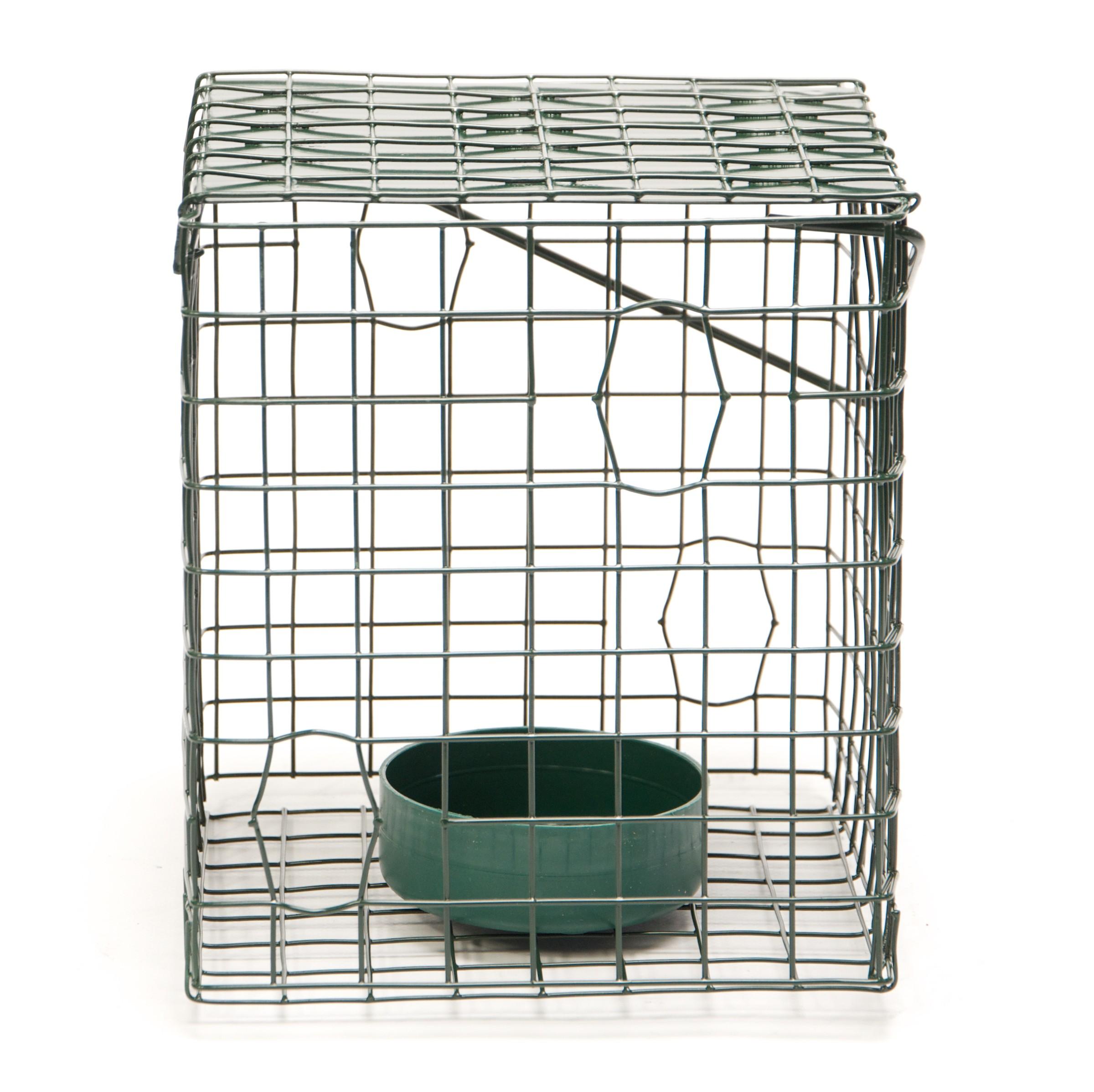 Caged Bird Feeder   Buy Online at Vine House Farm