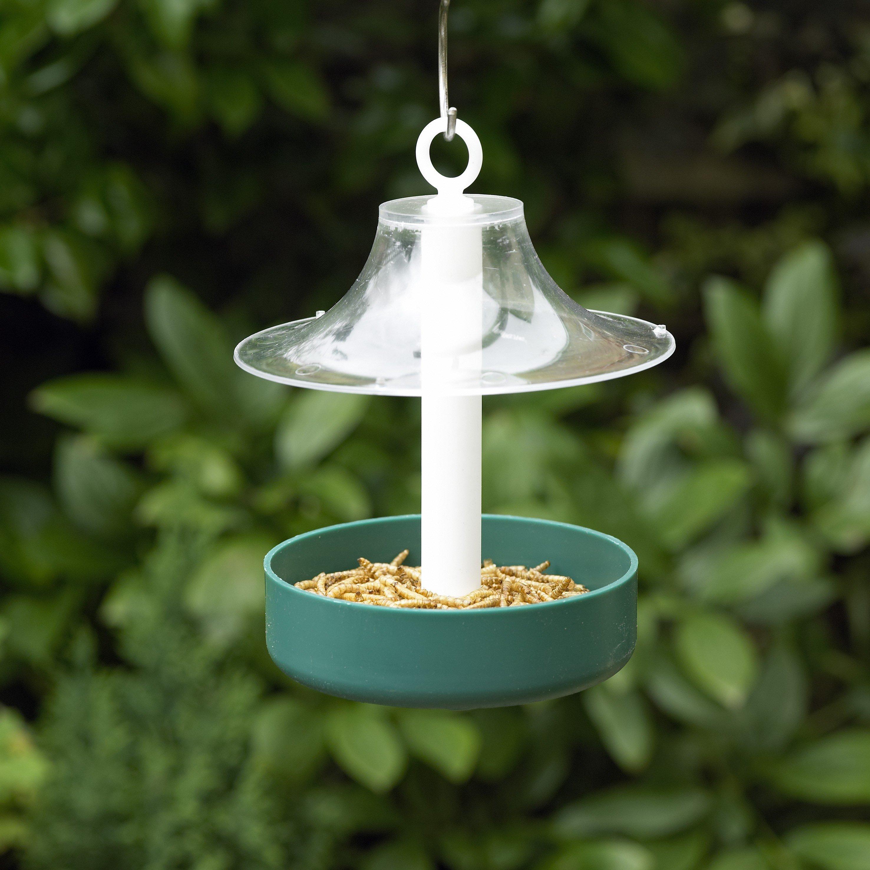 squirrel top topflightfortresssquirrelproofbirdfeeder cfm bird proof product hayneedle feeder flight fortress