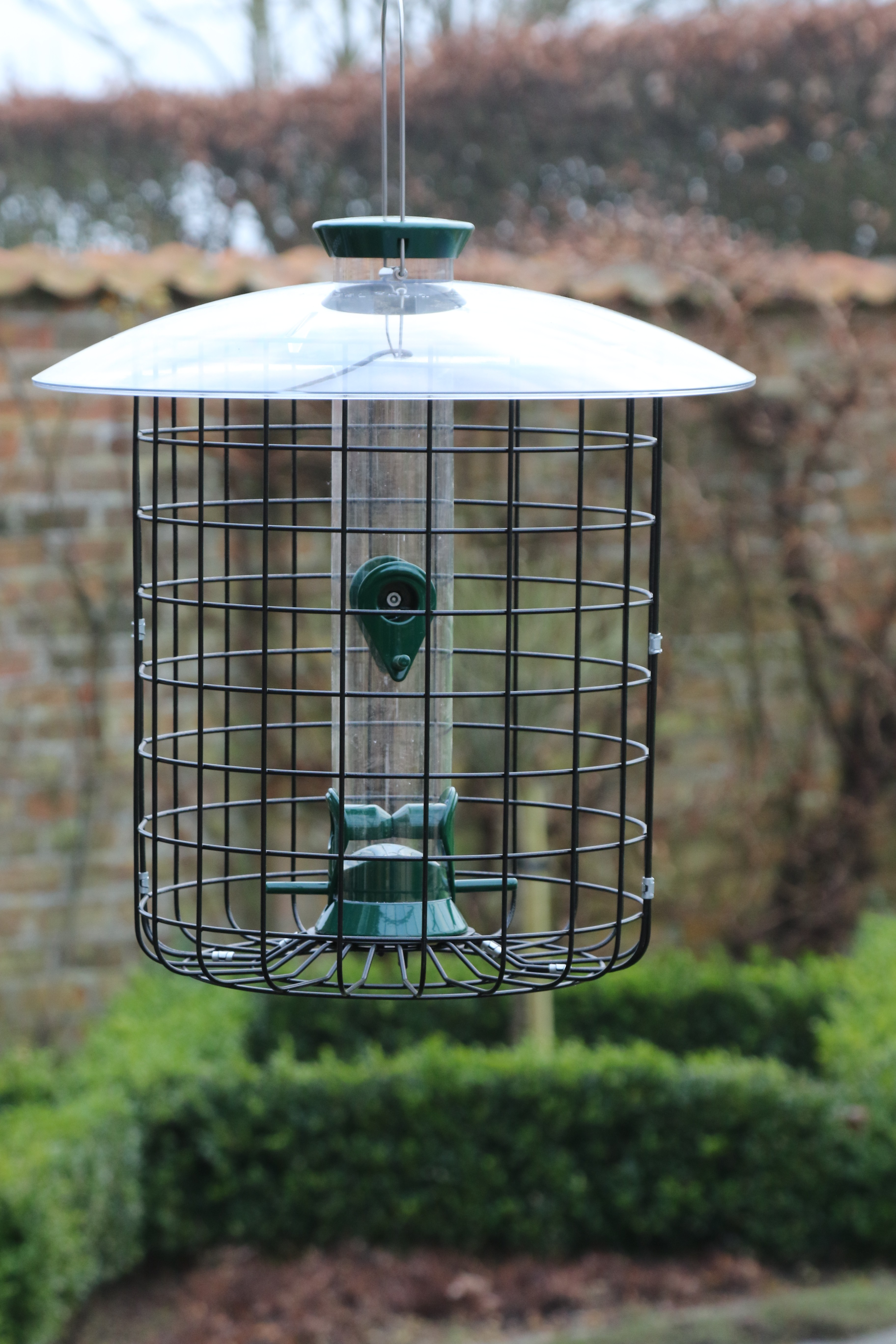 Parakeet Proof Cage   Buy Online at Vine House Farm