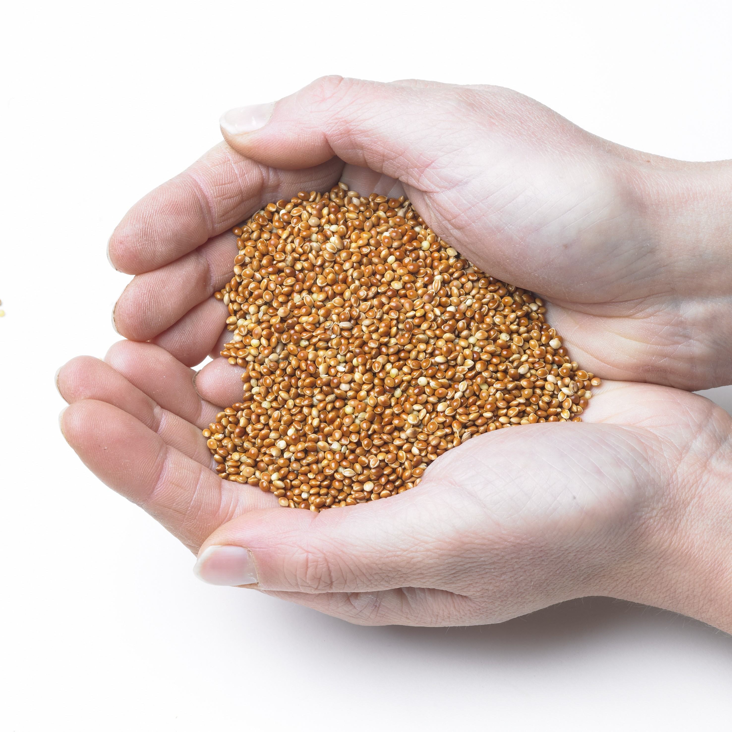 Millet Feeding