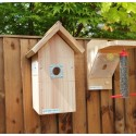 Bird Box & Feeder High Resolution Camera System