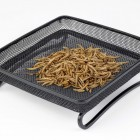 Compact Ground Feeder Tray