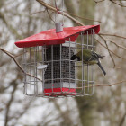 Geohaus Red Compact Peanut Feeder
