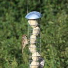 Heavy Duty Suet Fat Ball Feeder