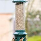 Squirrel Buster Bird Feeders