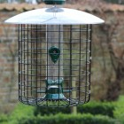 Parakeet Proof Cage