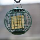 Squirrel Resistant Suet Block Feeder