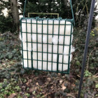 Nesting Wool in Suet Block Feeder