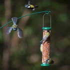 Droll Yankee - The One Peanut Feeder