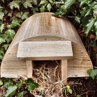 Original Hedgehog House