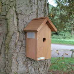 Bird Box High Resolution Camera System
