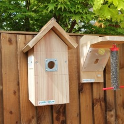 Bird Box & Feeder