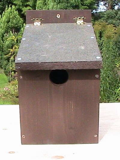 Starling Wooden Nest Box