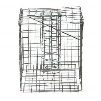Caged Feeder-Fat Ball Feeder
