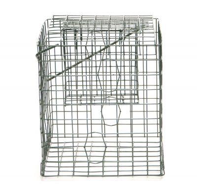 Caged Feeder-Suet Block Feeder