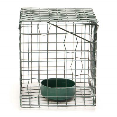Caged Feeder-Live Food Feeder