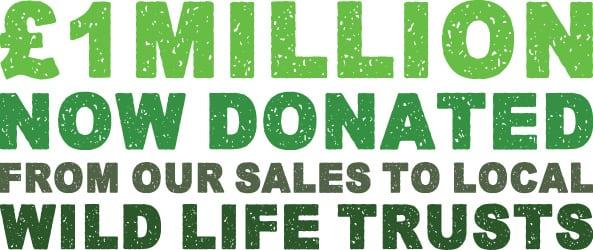 £1million logo