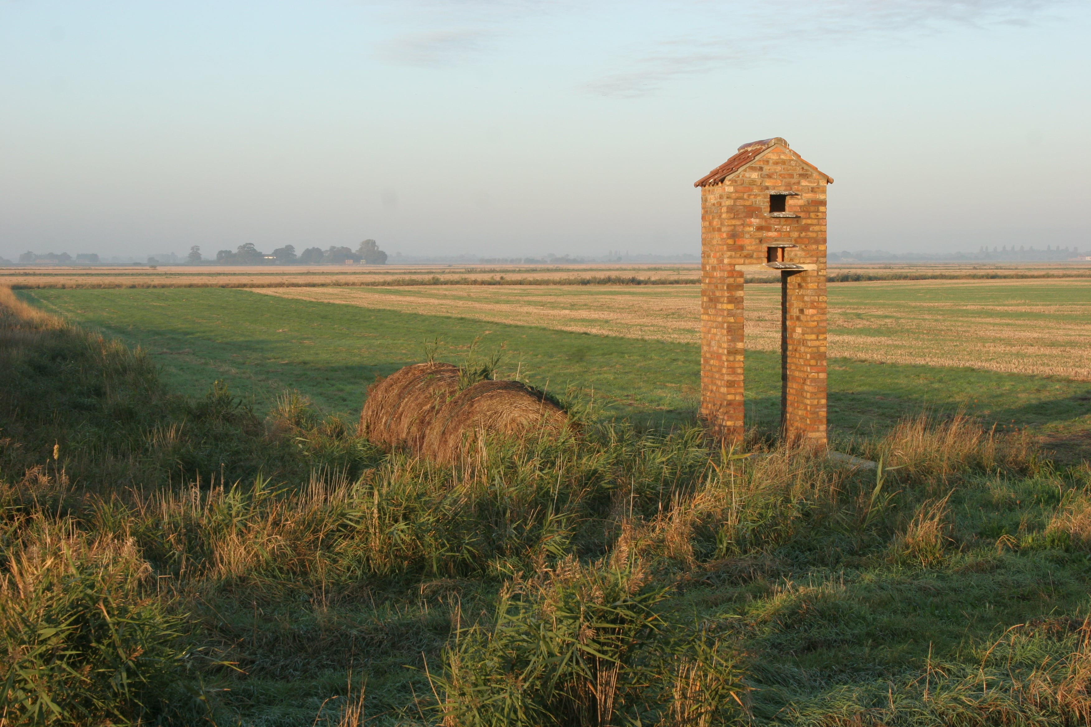 Barn Owl Tower