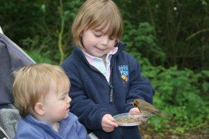 Why do we feed wild birds?